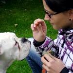 Tiertrara - Hundschule Augsburg